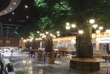 南京巴布洛室内餐厅仿真榕树工程