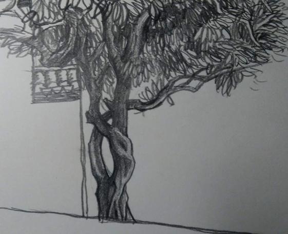 水泥假树手绘图    水泥假树建于博物馆的入口处,高度约3米