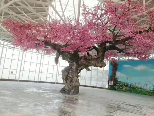 水泥假树中的花树详细介绍